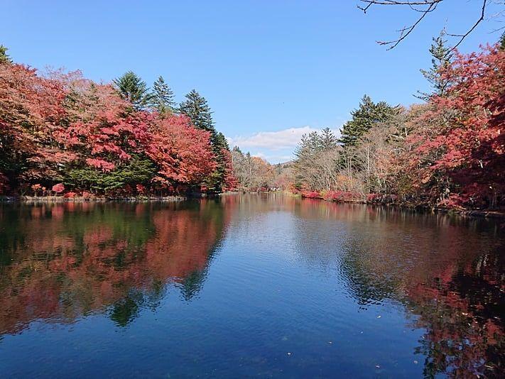 軽井沢の紅葉と言えば雲場池